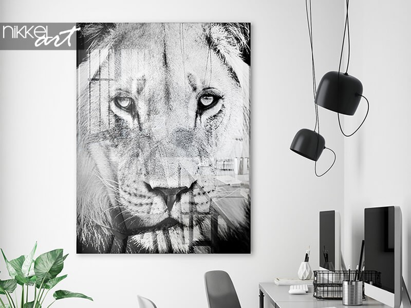 Black and white photograph on acrylic prints:  discover the bestsellers