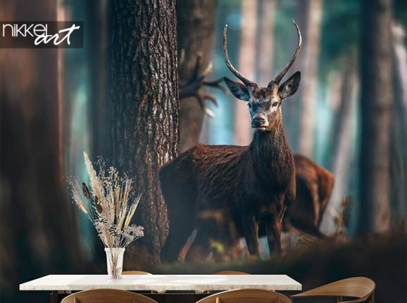 Photo wallpaper with deer
