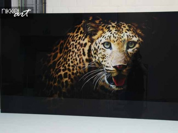 Photo on Acrylic Leopard